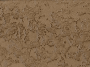 Concrete Coating in Kahlua Creme